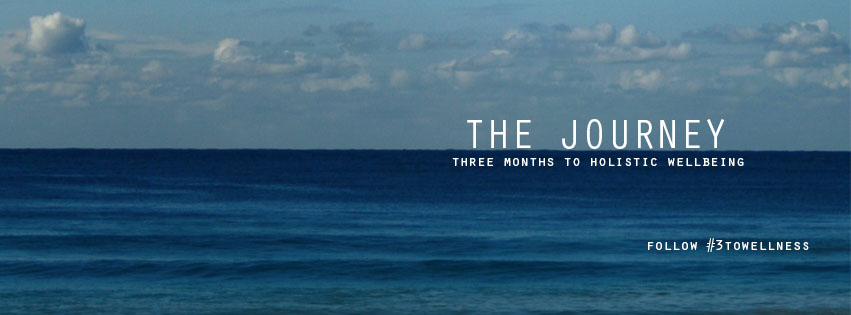 My Journey Begins[3toWellness]